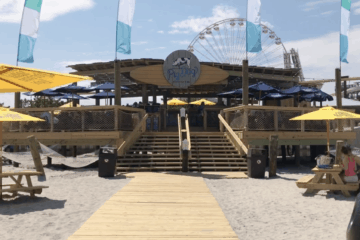 PigDog Beach Bar Tour
